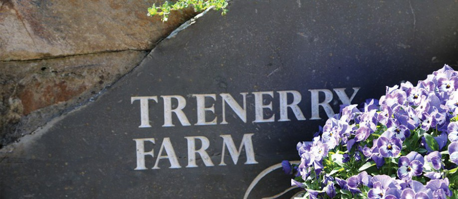 Trenerry Farm Holiday Cottages in Cornwall